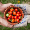 Find Meaning Through Food (Thought-Provoking Exercise)